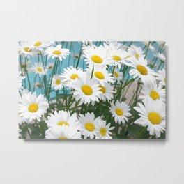 Daisies flowers in painting style 3 Metal Print