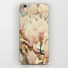 Magnolia and Cream iPhone & iPod Skin