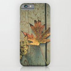 Fallen Ones, Two Autumn Leaves on Rustic Blue Porch Boards iPhone 6s Slim Case