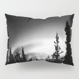 The Truth is Out There : Pillow Sham