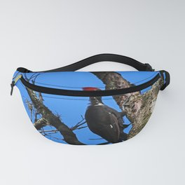 A Female Pileated Woodpecker Fanny Pack