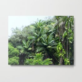 Hawaiian Rainforest Metal Print