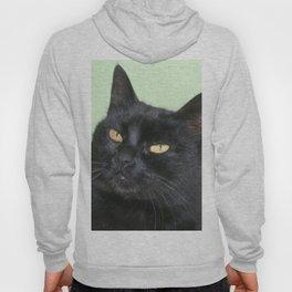Relaxed Black Cat Portrait  Hoody