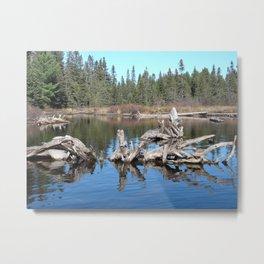 Canoe Lake Metal Print