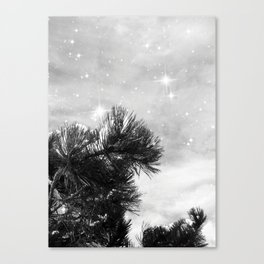 Magical Winter Night Canvas Print