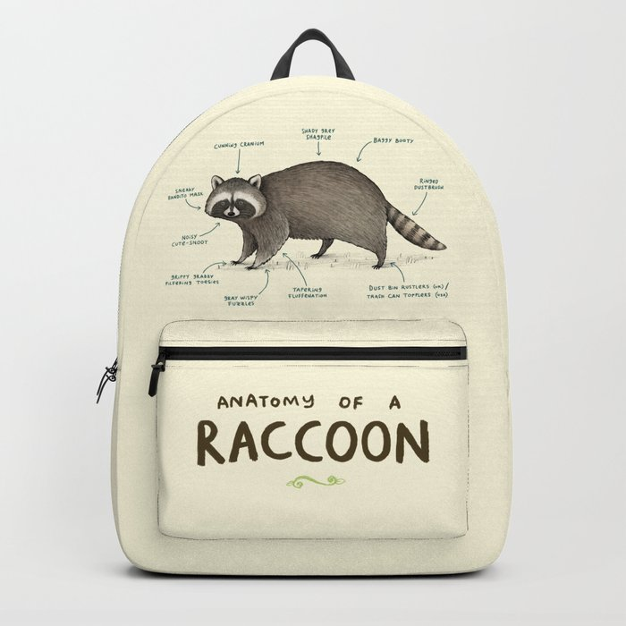 Anatomy of a Raccoon Backpack