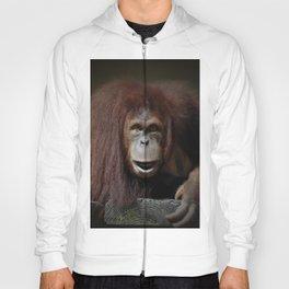 Indah - Sumatran Orangutan Hoody