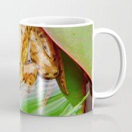 Frog on Pad Coffee Mug