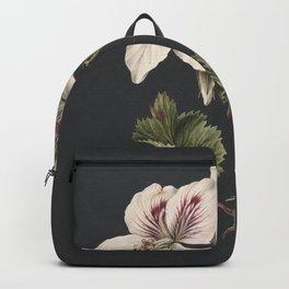 M. de Gijselaar - Pelargonium album bicolor (1830) Backpack