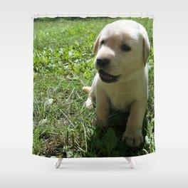 Gggrrr Yellow lab puppy Shower Curtain