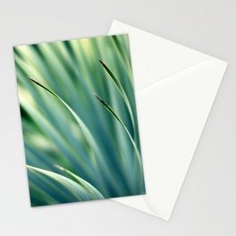 Spiked Leaves on a Slant Stationery Cards