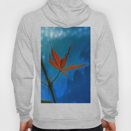 The sprouts of maiden grapes Hoody