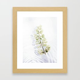 Floating Branch Framed Art Print