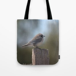 Black-faced Woodswallow (Artamus cinereus) Tote Bag