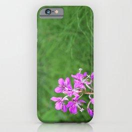 Fireweed Wildflower iPhone Case