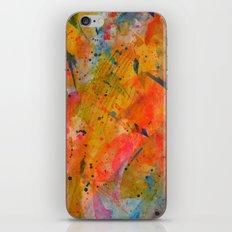 Racquetball iPhone & iPod Skin