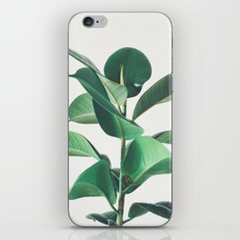 Rubber Fig iPhone Skin