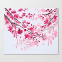 cherry blossoms Canvas Prints featuring Cherry Blossoms  by Catherine Holcombe