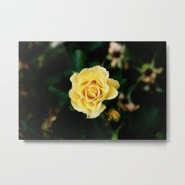 Bright Love Metal Print
