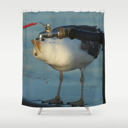 Seagull Bird Drinking from a tap Shower Curtain