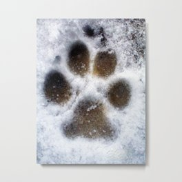 set in snow. Metal Print