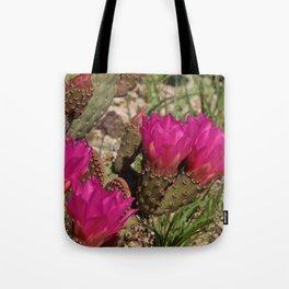 Beavertail Cactus in Bloom - II Tote Bag