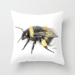 White-tailed bumblebee, poster #3 Throw Pillow