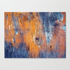 Eye of The Barn 2 Canvas Print