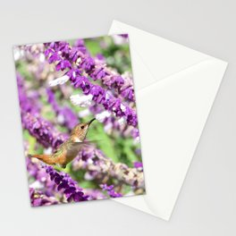 Allen's Hummingbird in Mexican Sage Stationery Cards