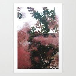 Fire Bush, 2017 Art Print