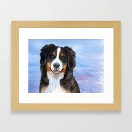 Dog 125 Bernese Mountain Framed Art Print