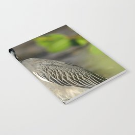 Yellow Crown Night Heron Notebook