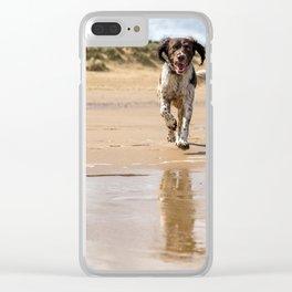 Springer Spaniel Clear iPhone Case