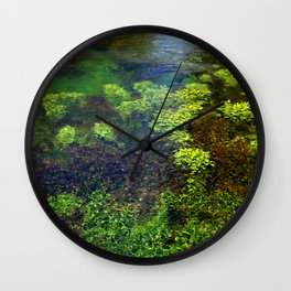Giant Springs - Great Falls, Montana Wall Clock