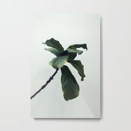 Minimalism plant Metal Print
