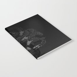 Lonely Hydra Notebook