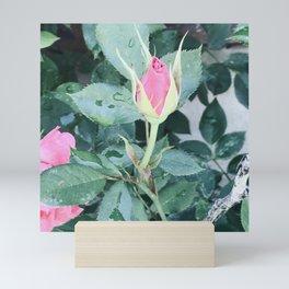 Perfect pink Mini Art Print