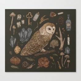 Harvest Owl Canvas Print