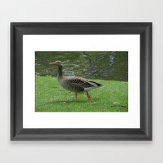 Goose Lake Framed Art Print