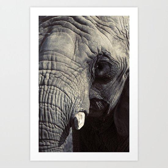 ELEPHANT OH MY! Art Print