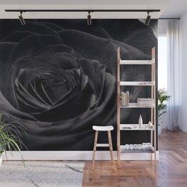 Black Rose Wall Mural