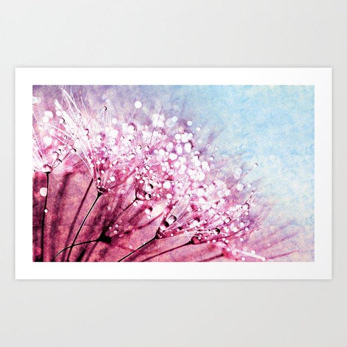 Mauve Lavender Blue Dandelion Dew Flowers Art Print