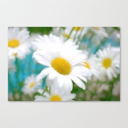 Daisies flowers in painting style 4 Canvas Print