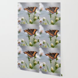 Butterfly By The Channel Wallpaper