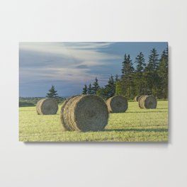Hay Bales on Prince Edward Island Metal Print