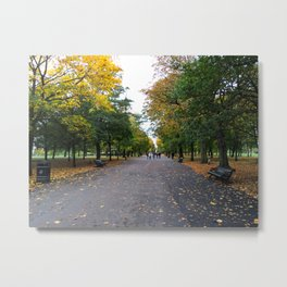 Regents Park 3 Metal Print