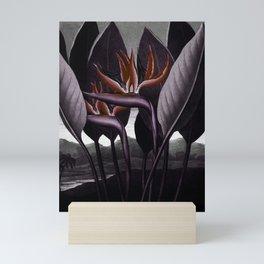 Birds of Paradise : Temple of Flora Dark Mini Art Print