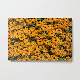 A field of flowers Metal Print