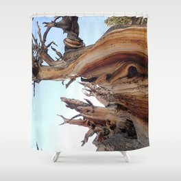 Trees twisting in the wind Shower Curtain