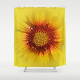 Flowers: Kissed by the sun sunflower Shower Curtain